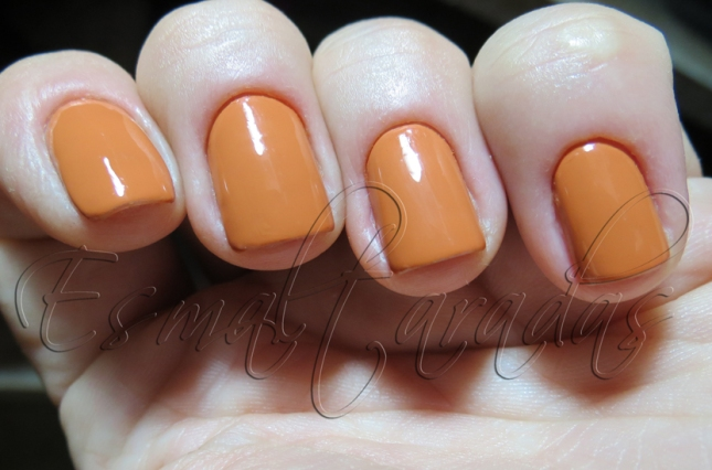 Neutral Orange - Peripera OR 408 3