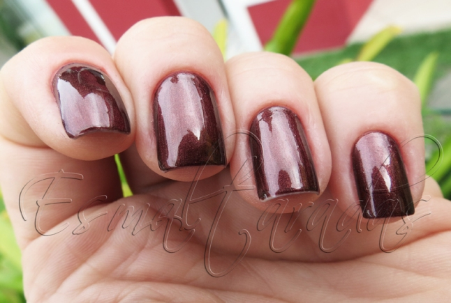 Haute Chocolate - Sally Hansen3