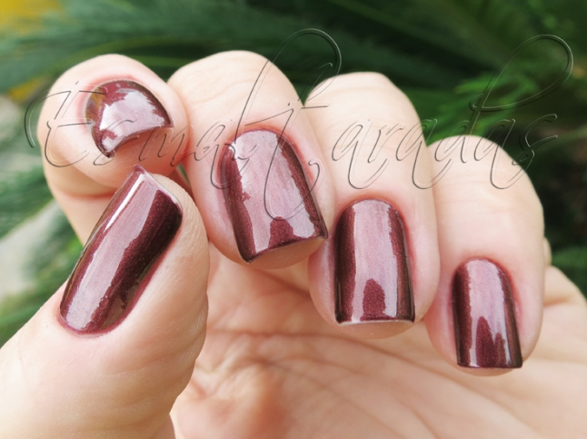 Haute Chocolate - Sally Hansen4
