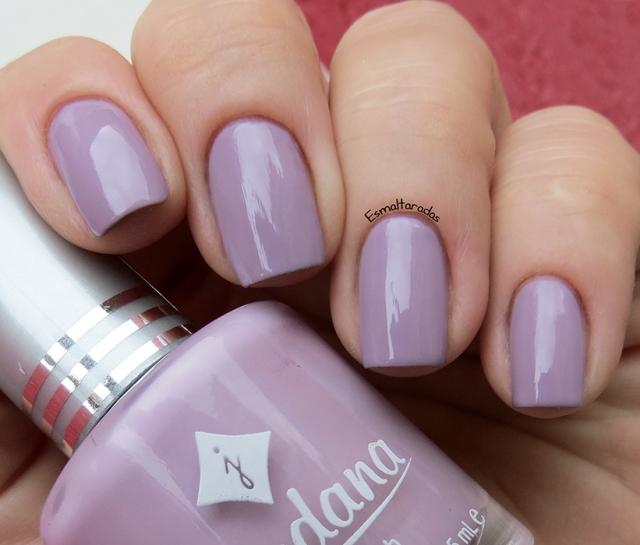 Lavender Fields - Jordana2