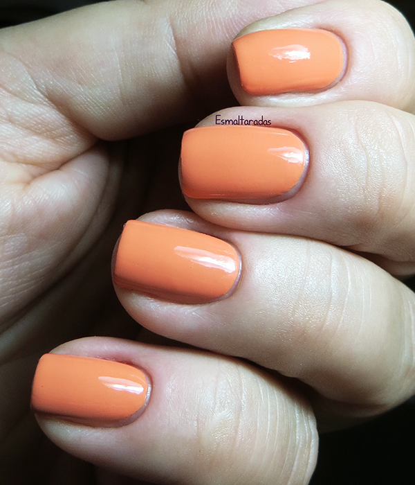 Where did Suzi's Mango - OPI4