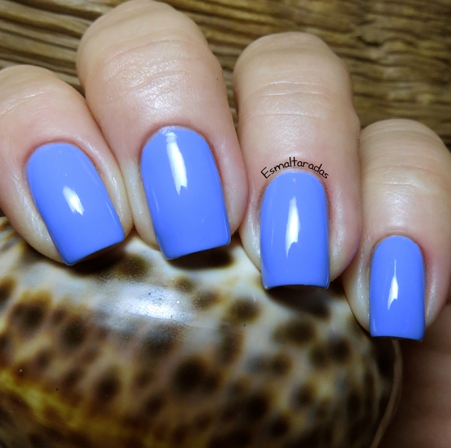 Swagger - Picture Polish2