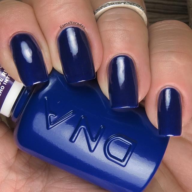 Blue Hibrido - DNA Italy2