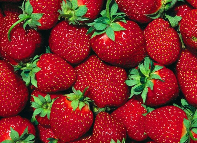 fresh-red-strawberries-fruit-wallpapers-1024x768