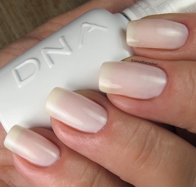 Milk Hibrido - DNA Italy3