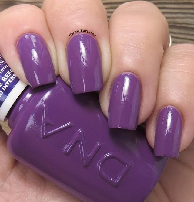 Violet Hibrido - DNA Italy2
